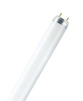 Лампа люминесцентная L 30W/640 30Вт T8 4000К G13 OSRAM 4008321959690 линейная ЛЛ L30/640 белая Т8 640 d26x895мм купить в Москве по низкой цене